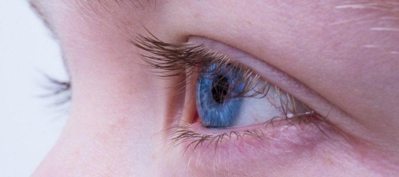 jaskra wzrok